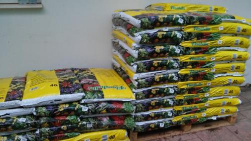 Plant soil-2